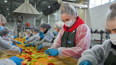 В Адыгее открылась первая очередь завода быстрозамороженной плодоовощной продукции