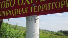 В Краснодарском крае создали прибрежный природный комплекс «Ясенская коса»