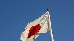 «Единоросс» напомнил Токио, чьи Курилы