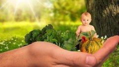 Адреса и время выдачи детского питания в городе Пушкино