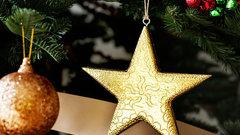Три новогодние елки установят в Новосибирске за 2,5 млн рублей