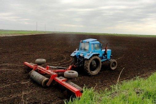 На Кубани увеличат площадь сева риса