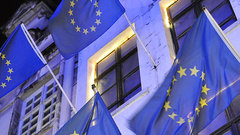 Совфед: иск ЕС из-за запрета импорта свинины - «беспредел»