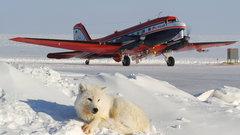 Арктический лед худеет на глазах