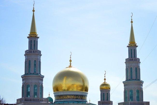 Как конфликт Макрона с мусульманами могут легко экспортировать в Россию