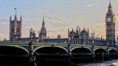 На Лондон напали ядовитые гусеницы