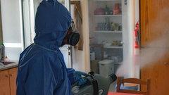 В Ленинградской области ветеринары помогут в борьбе с коронавирусом