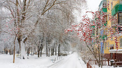 В Новосибирск на выходных вернется зима
