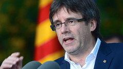 В Испании запретили торговую марку со свиньей в образе Пучдемона