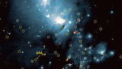 Астрономы нашли выводок недоделанных звезд