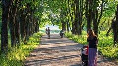 В Академгородке Новосибирска заброшенный пустырь превратят в сквер