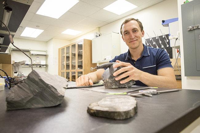 В Антарктиде найдены остатки древнего леса