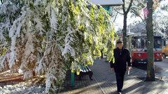 Доктор наук рассказал о пользе снегопадов на Ставрополье