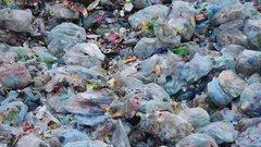 Росприроднадзор проверит контрабанду мусора в Архангельскую область