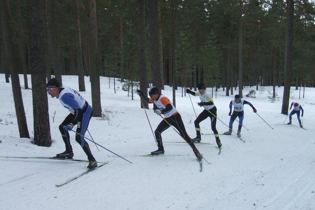 Около тысячи лыжников примут участие в мурманском лыжном марафоне