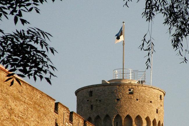 Эстония флаг
