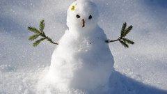 Воронежцев зовут на состязания по лепке снеговиков