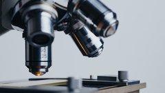 Крымские ученые придумали генетическое «лассо» для коронавируса