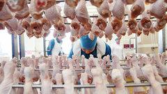 Россия снимает запрет на поставку курятины из США