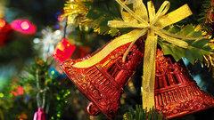 В Перми началась установка новогодней елки