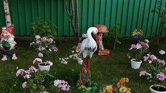 В Салехарде проходит конкурс «Цветущий город»