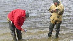 До конца 2024 года в Новосибирской области очистят реку и два озера