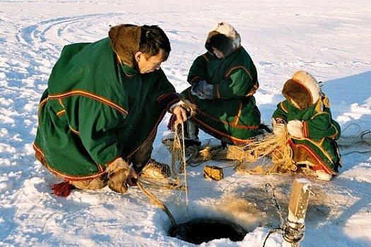 В Надыме накануне соревнований оленеводов откроются две выставки о народах Арктики