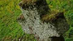 В Рыбинске ограничили посещение кладбищ