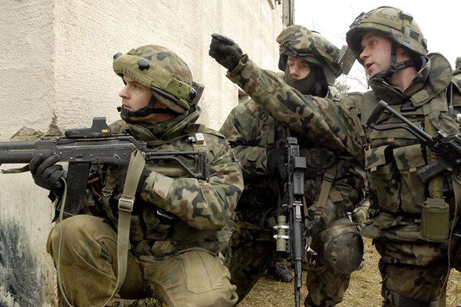 Польша создаст новую дивизию навостоке из-за «непредсказуемой политики» РФ