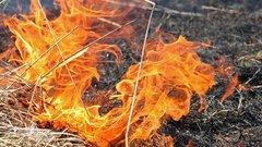 В Новосибирской области будут судить поджигателя