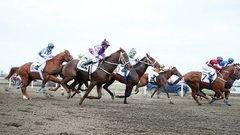 Азартные россияне помогут оживить конный спорт