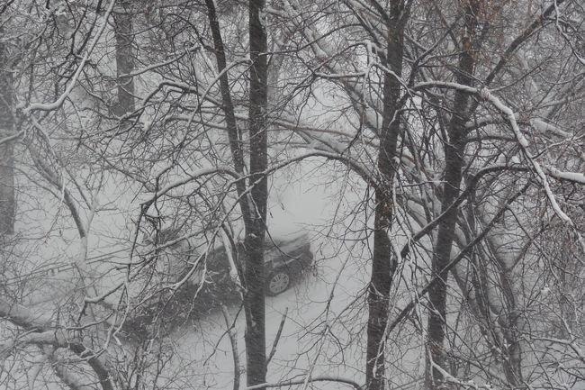 На Москву обрушился мощнейший снегопад