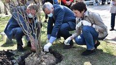 Губернатор Новосибирской области Андрей Травников принял участие в акции «Сад памяти»