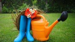 С 1 мая в Омске начнут ходить садовые маршруты