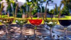 Кубанские депутаты занялись улучшением качества местного вина