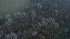 Причины лесных пожаров назвали в МЧС Карелии
