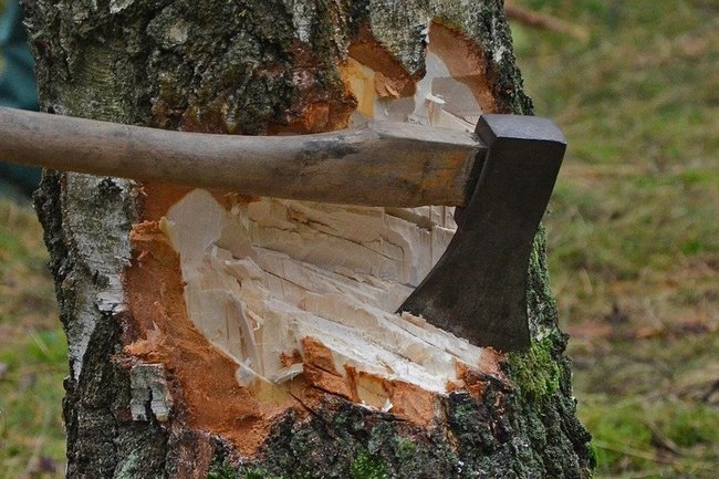 топор лес