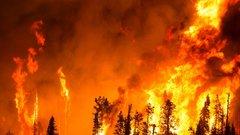 Жителям Новосибирской области назначено более 260 тысяч рублей штрафов за нарушение правил пожарной безопасности