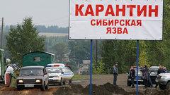 Военные завершили ликвидацию последствий вспышки сибирской язвы в ЯНАО