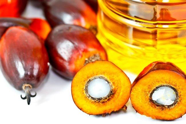 Росстат: Российская Федерация наращивает закупки пальмового масла
