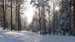 В Финляндии появился отель с номерами на санях