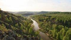 В поисках хозяина леса в России смотрят не туда – мнение