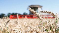 Экспорт челябинской сельхозпродукции может достичь $292 млн