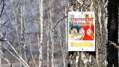 В лесах Иркутской области ввели особый противопожарный режим