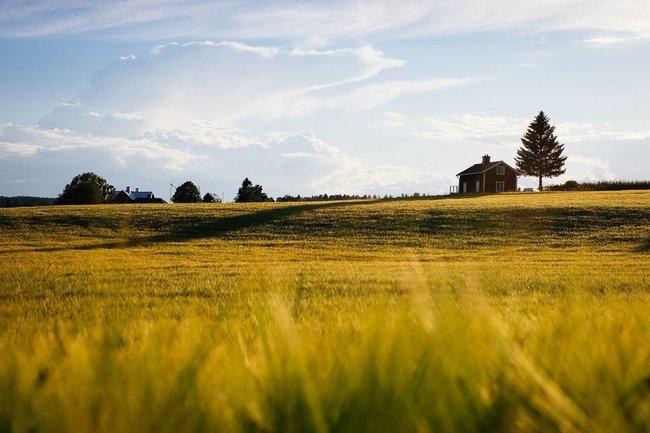 земля дом хозяйство