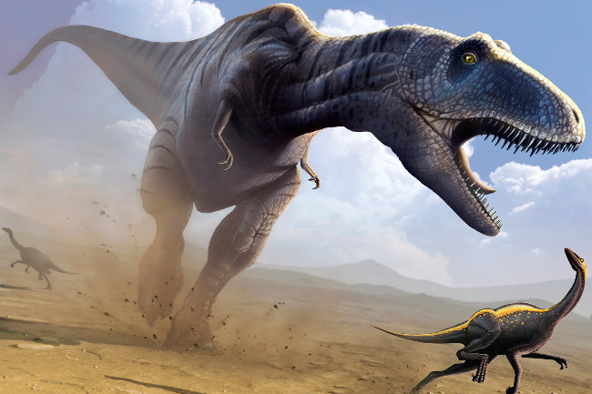a study on the extinction of the dinosaurs The extinction of the dinosaurs non-avian dinosaurs went extinct 66 million the abruptness of the dinosaur extinction suggests a key role for the.