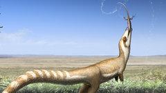 В Китае найден динозавр, похожий на енота