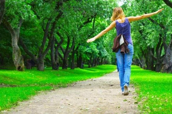 прогулка в лесу парк