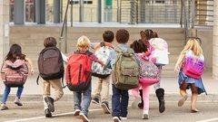 Амлинская: Школьная система больше не работает