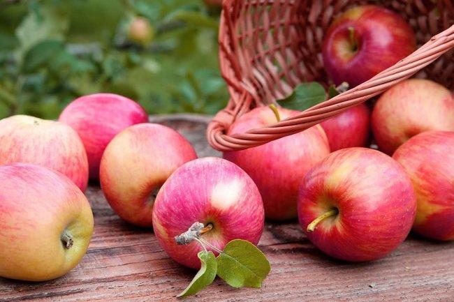 Польза от яблок: как они продлевают жизнь
